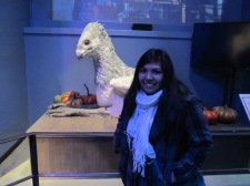 Buckbeak and I